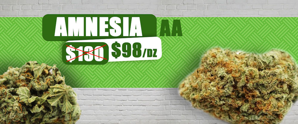amnesia, Greens Express Delivery